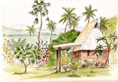 Sketching in Fiji